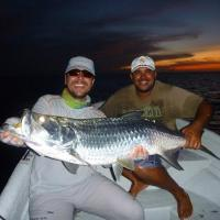 Tarpon Junior